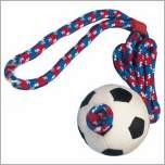 Wurfspielzeug für den Sport das Hundespielzeug für vitalte Hunde